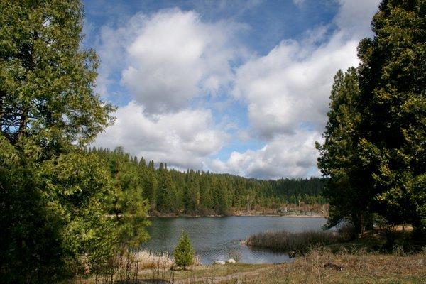 White Pines, CA